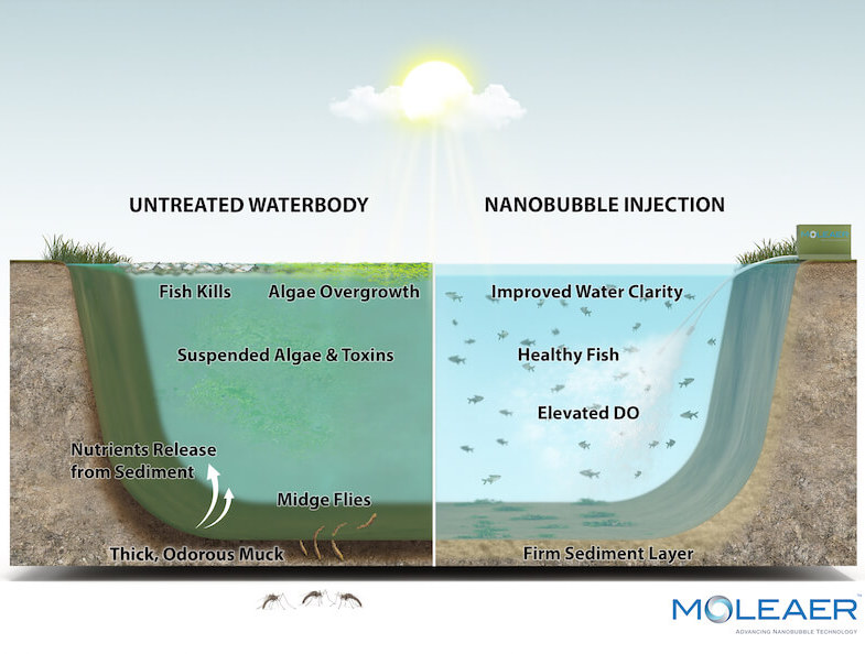 Sidebyside model of untreated waterbody and nanobubble injection