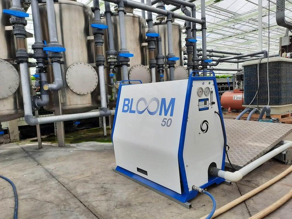Bloom Install Photo